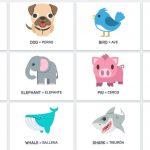 animales1 150x150 - ¿Qué enseñar en Ingles a Niños de Primaria? 10 Temas Básicos