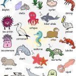 animales4 150x150 - ¿Qué enseñar en Ingles a Niños de Primaria? 10 Temas Básicos
