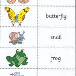 animales6 150x150 - ¿Qué enseñar en Ingles a Niños de Primaria? 10 Temas Básicos